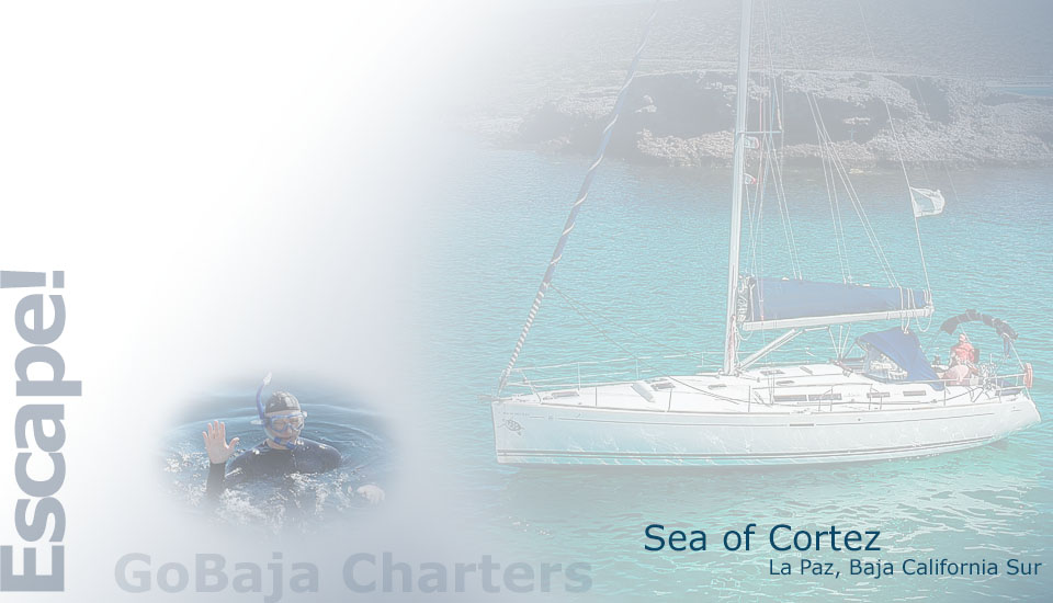 Seascape Charters - Sailboat, Powerboat, and RV Chartering in La Paz Mexico.